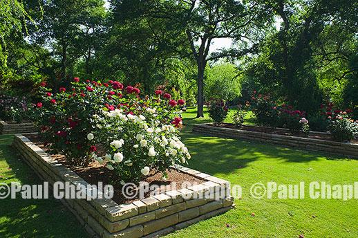 Landscape architecture photography Dallas landscape