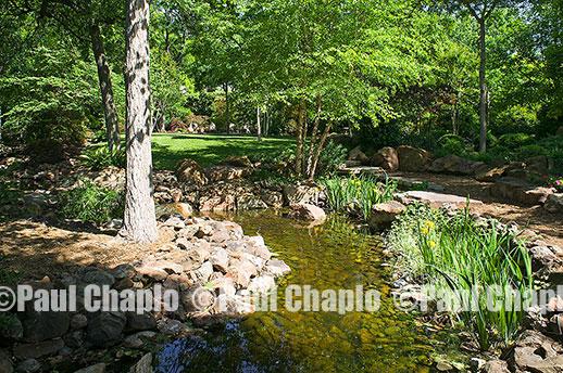 Water Garden Landscape Architecture Digital Photographers Dallas, TX Texas  Architectural Photography Garden Design