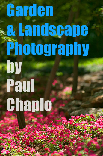 Landscape architecture photography Dallas landscape photographer